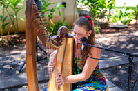 Celtic Harp Under the Banyan Tree  Lahaina Maui